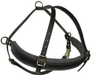 hand-made leather dog harness
