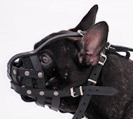 Adjustable Leather Basket French Bulldog Muzzle