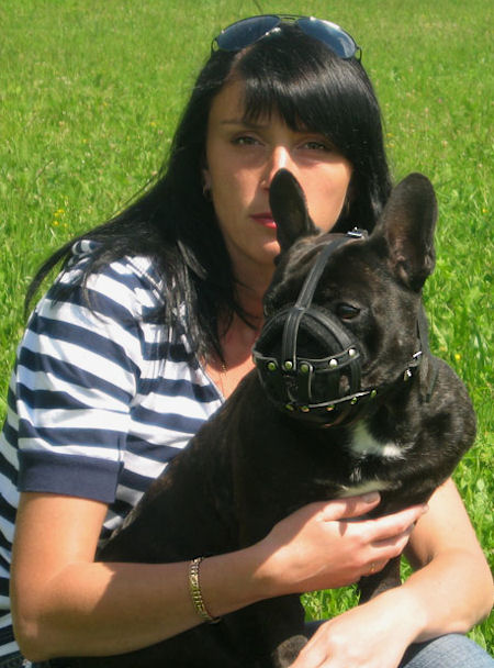 Training Leather French Bulldog Muzzle