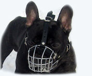 Bouledogue Francais Wire Basket Muzzle