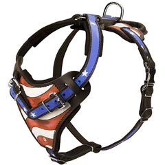 Hand painted American Pride Leather Bulldog Harness