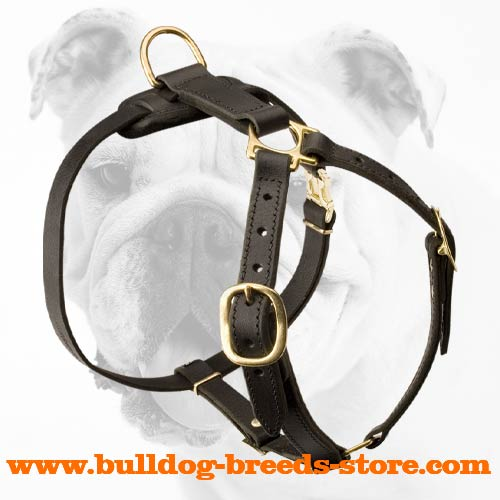 Adjustable Walking Leather Bulldog Harness