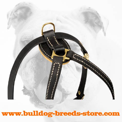 Leather Dog Harness for Bulldog Puppies Training