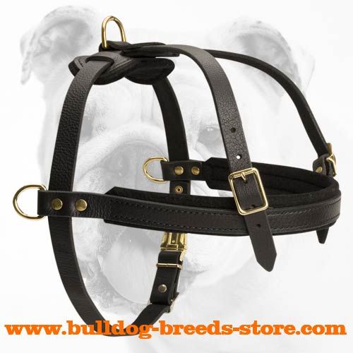 Adjustable Pulling Leather Dog Harness for Bulldog