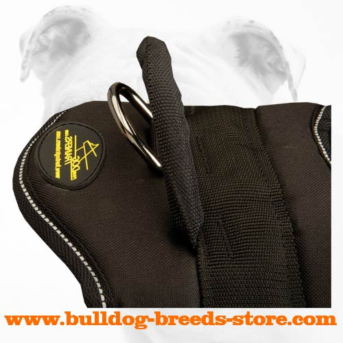 Handle on Pulling Nylon Bulldog Harness