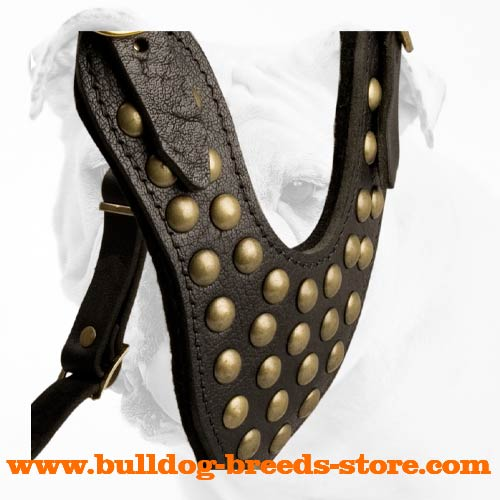 Padded Training Leather Bulldog Harness