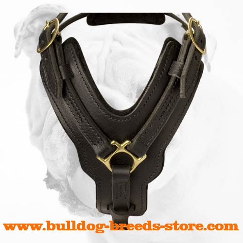 Leather Dog Harness for Bulldog Everyday Walking