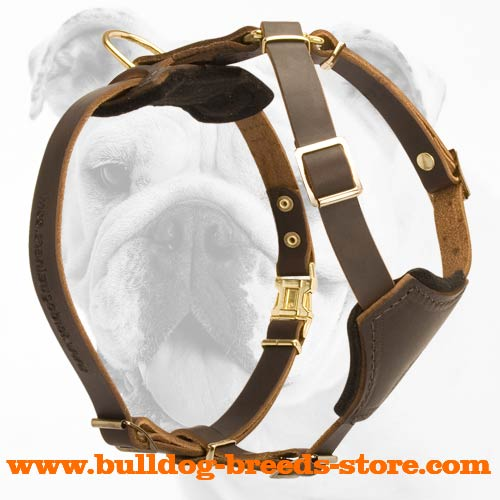 Super Durable Leather Bulldog Puppy Harness