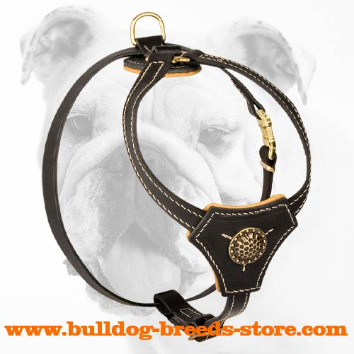 Leather Bulldog Harness for Tracking