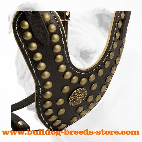 Padded Studded Leather Bulldog Harness