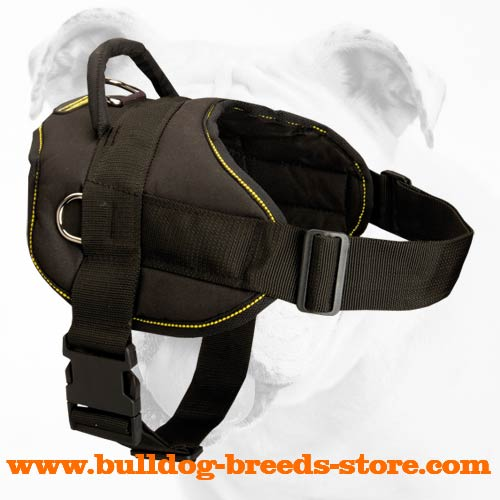 Best Training Nylon Bulldog Harness