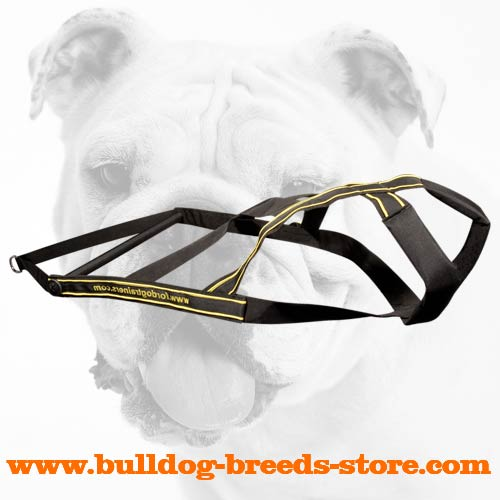 Strong and Durable Nylon Dog Harness for Bulldog