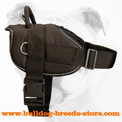 Water Resistant Nylon Bulldog Harness with Wide Straps