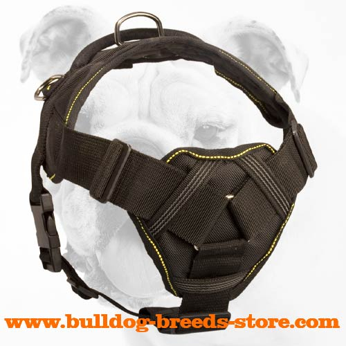 Multifunctional Training Nylon Bulldog Harness