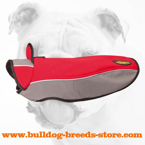 Durable Walking Winter Nylon Bulldog Jacket