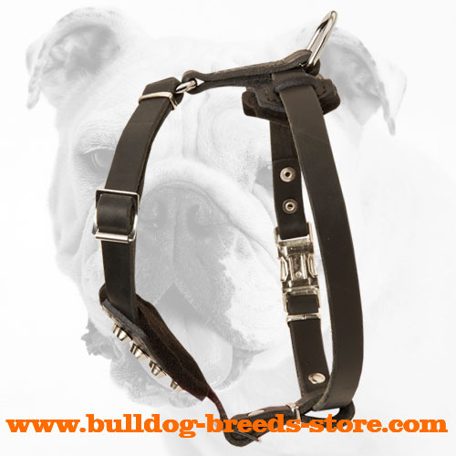 Designer Leather Bulldog Puppy Harness with Wide Straps