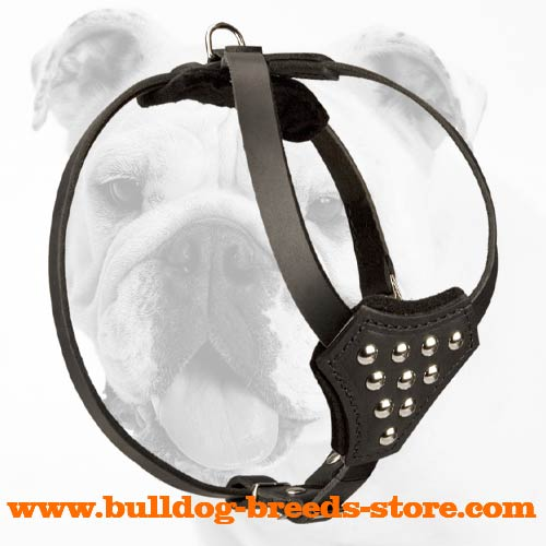 Comfortable Training Studded Leather Dog Harness for Bulldog Puppies