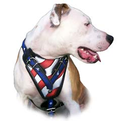 Wide Comfortable Painted Leather Bulldog Harness