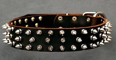 Leather Spiked dog collar - custom dog collar with spikes