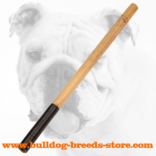 Bulldog Bamboo Stick for Training