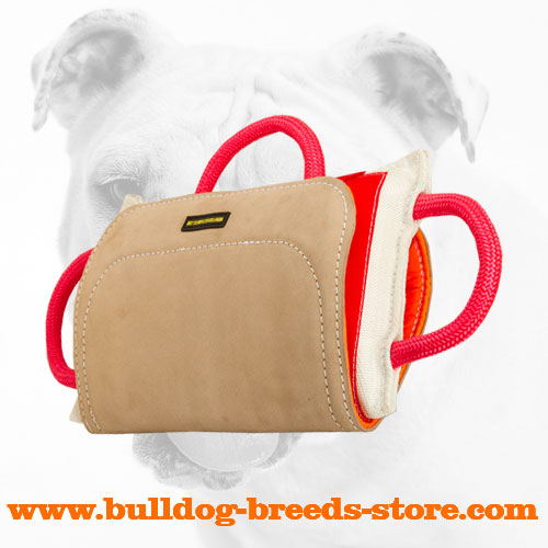 Training Bulldog Bite Pillow with Leather Cover