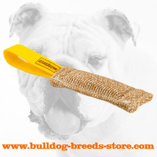 Jute Bulldog Puppy Bite Tug with a Loop