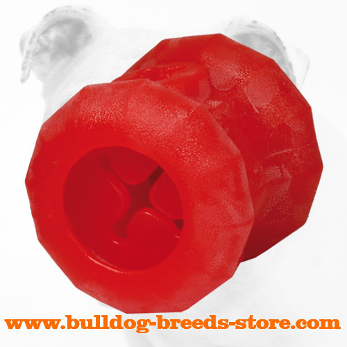Rolling Bulldog Chew Toy