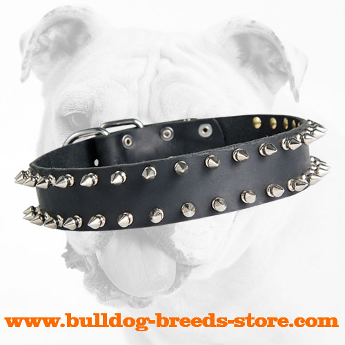 Fabulous Spiked Leather Collar with 2 Rows of Spikes for Bulldogs