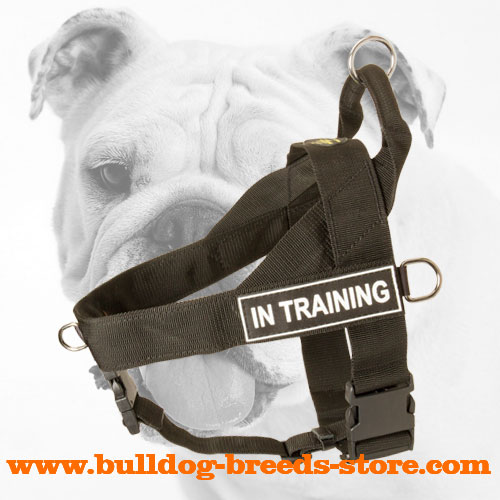 Lightweight Nylon Bulldog Harness for Pulling Activities