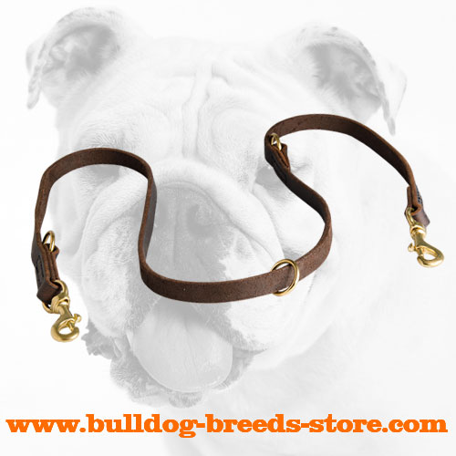 Extra Strong Multifunctional Leather Bulldog Leash