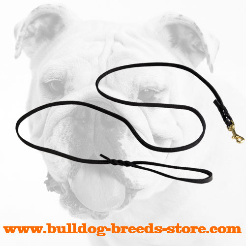Excellent Leather Bulldog Leash for Dog Shows