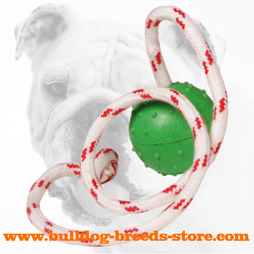 Dotted Rubber Bulldog Ball for Water Training