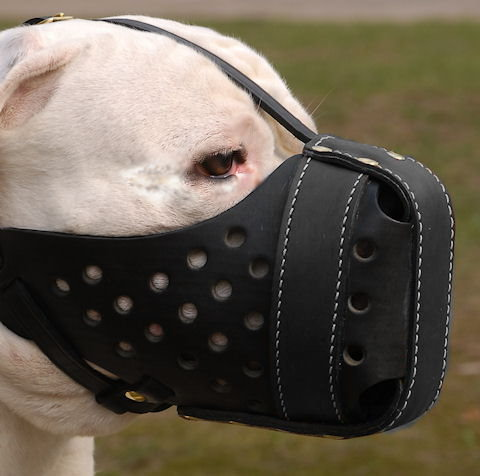 Agitation Training Leather BullyPit Muzzle