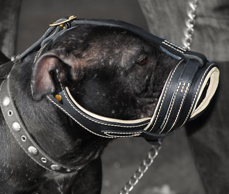 BullyPit Royal Nappa Leather Anti Barking Muzzle