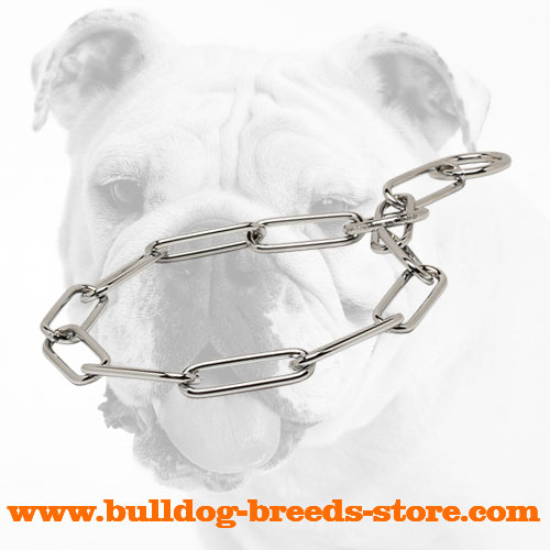 Chrome Plated Steel Bulldog Fur Saver Choke Collar