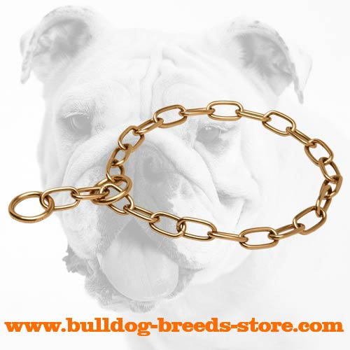 Durable Curogan Bulldog Choke Collar for Training