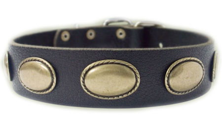 Designer Dog Collar - Exclusive Leather  Collar for Pitbull   C103