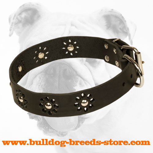 Superior Designed Leather Bulldog Collar with Trendy Decorations