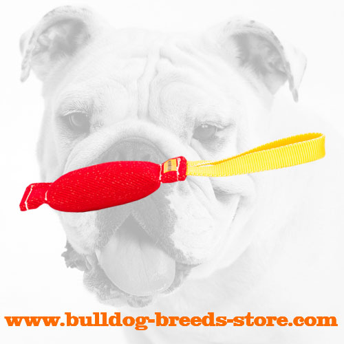 Durable Lightweight French Linen Bulldog Bite Tug with Handle