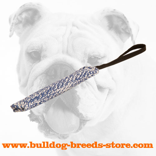 35% OFF - LIMITED OFFER Synthetic French Linen Bulldog Puppy Bite Tug