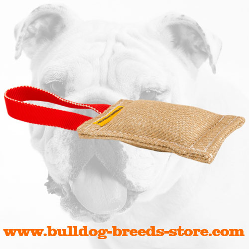 Jute Bulldog Bite Tug with one Handle