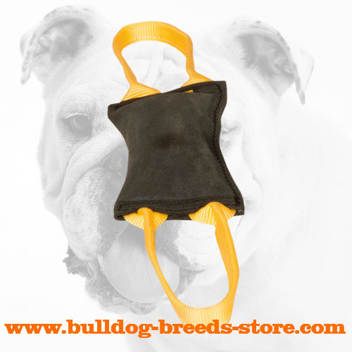 Strong Leather Bulldog Bite Tug with Handles