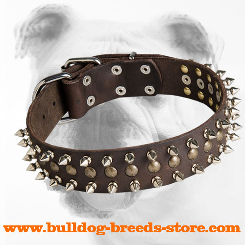 Trendy Leather Bulldog Collar with Spikes and Studs