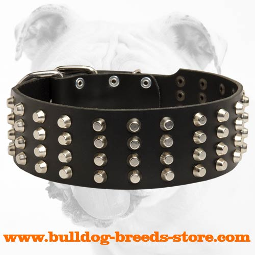 Wide Studded Leather Bulldog Collar for Training