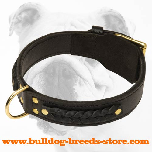 Gorgeous Wide 2 Ply Leather Dog Collar - Braided Leather Collar