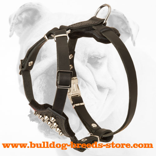 Hand-Decorated Top Quality Leather Bulldog Harness for Puppies