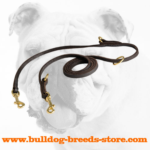 Reliable Leather Bulldog Leash for Walking and Training