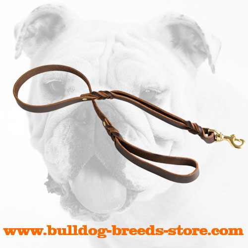 Practical Leather Bulldog Leash with Handle