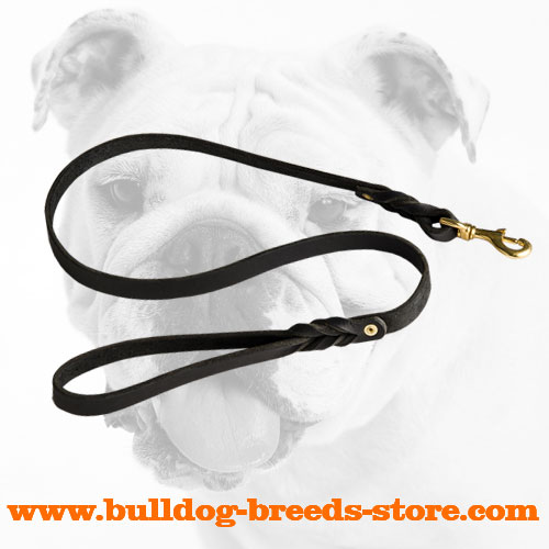 Hand-decorated Leather Bulldog Leash for Walking
