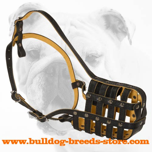 Super Ventilation Royal Leather Bulldog Muzzle